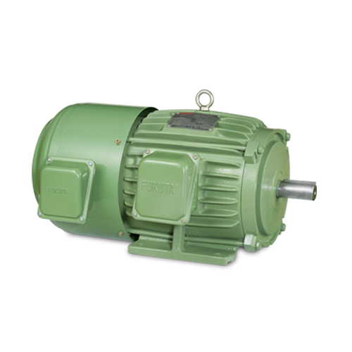 HomeProductsInverter / Inverter Duty Motor: GFEF Series