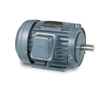 AC Induction Motor (IEC)
