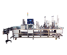 Automatic Type Sealing Machine