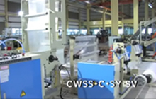 Side Sealing Chicken Bag Making Machine
